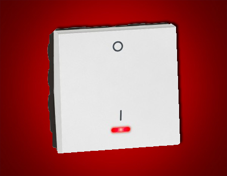 Arteor - 1-way double pole switch with indicator Red LED supplied 20 AX - 230 V~ 2 module(White)